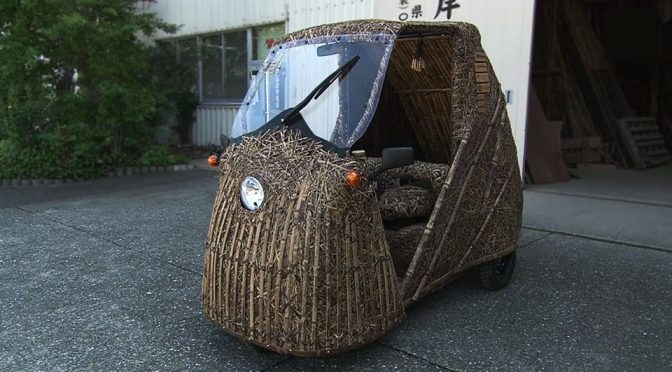 Crowdfunded Bamboo Car Set Realize Dreams of Investor