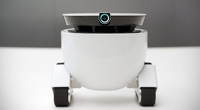 Roboming Fellow Is A Cute Robotic Companion, A Home And Pet Monitor