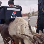 Domino's Japan Use Reindeer For Delivery To Beat The Extreme Snow