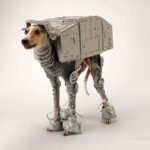 incredible AT-AT Halloween costume for dog, Bones Mello
