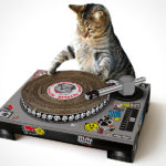 SUCK UK Cat Playhouse – let your cat be your house DJ