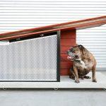 MDK9: A $3,650 Dog House That Looks Like Human's Modern Homes