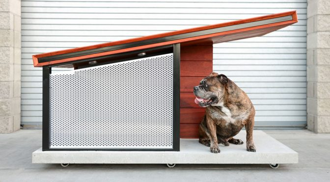 MDK9: A $3,650 Dog House That Looks Like Human's Modern Homes