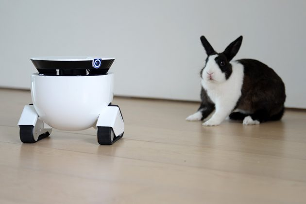 Roboming Fellow Personal Robot