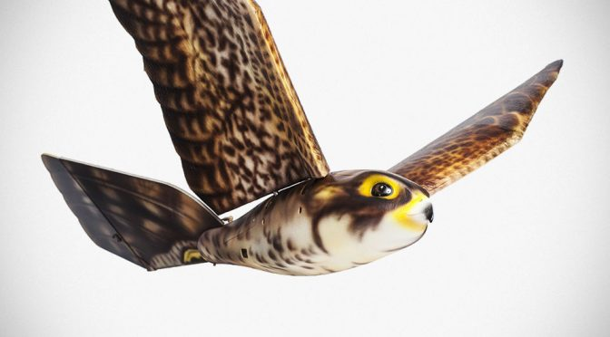Robotic Bird Of Prey Plays Scarecrow In The Sky To Keep Birds Away