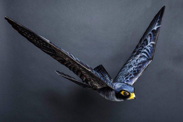 Robird Robotic Bird by Clear Flight Solutions