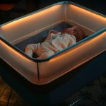 Here's How You Can Get A Moving Car Simulating Baby Cot By Ford