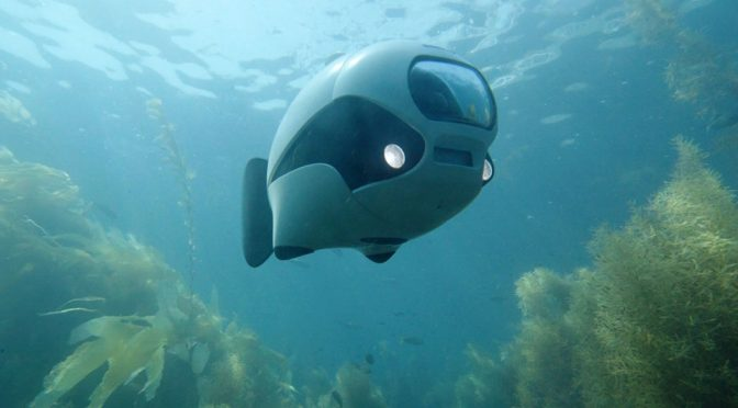 BIKI Bionic Unmanned Underwater Vehicle