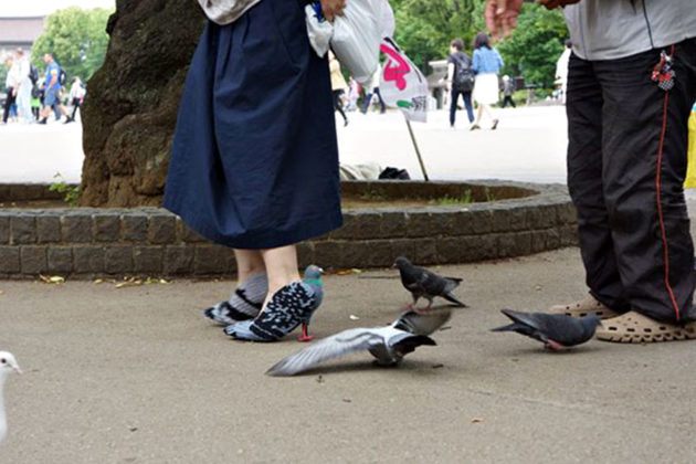 DIY Pigeon Shoes by Kyoto Ohata