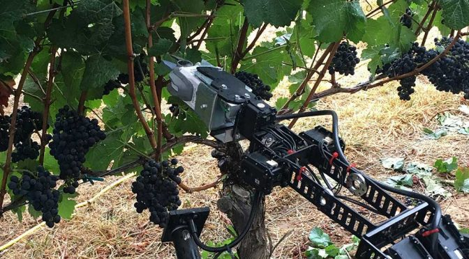 Digital Harvest Remote Operated Vineyard Robot