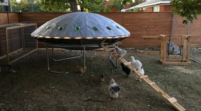 UFO Chicken Spaceship Coop by Backyard Chickens