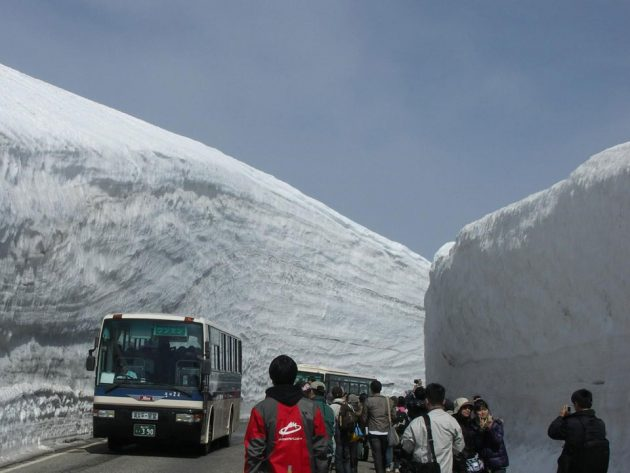 65-Foot Snow Corridor in Tateyama Kurobe Alpine Route Japan
