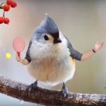 Videos Of Birds With Human Arms Are Wacky And Strangely Cool