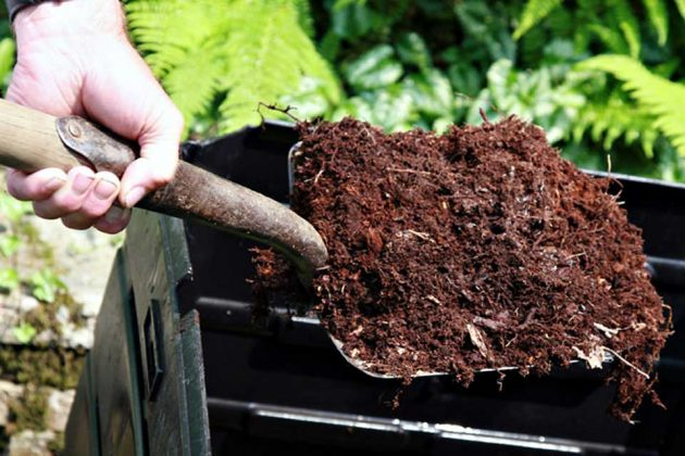 Gardening Tips Composting is Your Friend