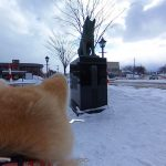 Now, You Can Explore Japan's Odate City Thru Akita Dogs With 'Dog View'