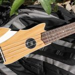 Ava Is Not Your Usual Ukulele. It's Electric And Very Unusual Looking