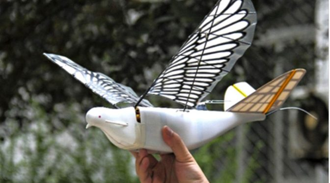 In China, Dove Surveillance Drone Is Watching From The Sky Above