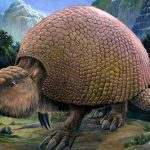 This Car-size Armadillo Walked The Earth 5.3 Billion Years Ago