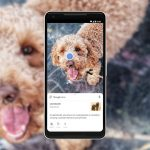 Google Lens Now Integrated Into Native Camera App In Several Devices