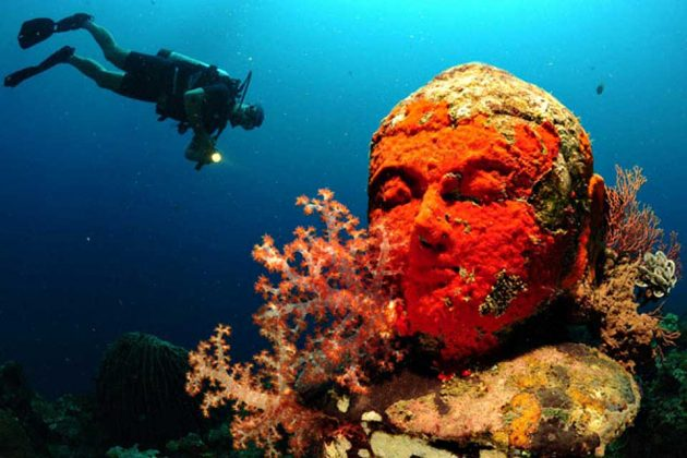 Snorkel Through an Underwater Temple Garden