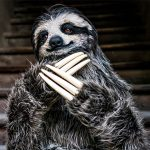 Artist Created A Sloth Costume That Is So Life-like, I Thought It Was A Giant Sloth