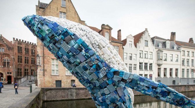 5 Tons Plastic Waste Whale Reminds Us Of The World's Plastic Problem