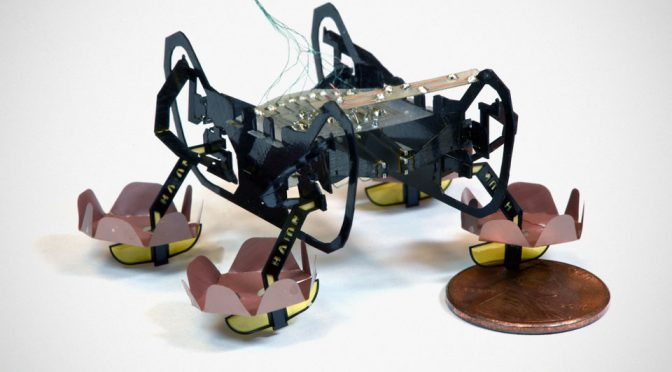 Cockroach-inspired Robot Bug Walks On Water, Land And Underwater Too