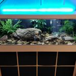 One Guy Turned An Ikea Kallax Shelving Into A Snake Terrarium
