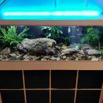 One Guy Turned An Ikea Kallax Shelving Into A Snake Terrarium
