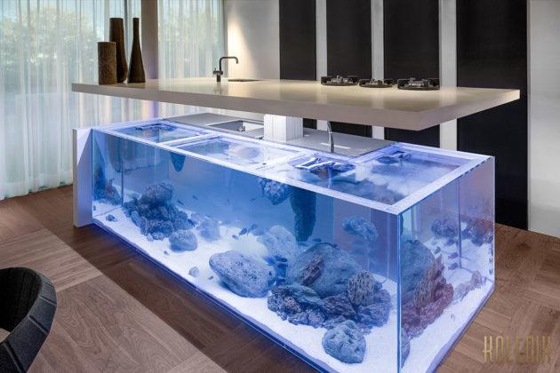 Kolenik Aquarium Kitchen