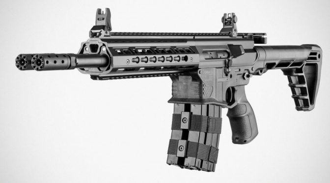 Silver Shadow Gilboa DBT Snake Double Barrel AR-15