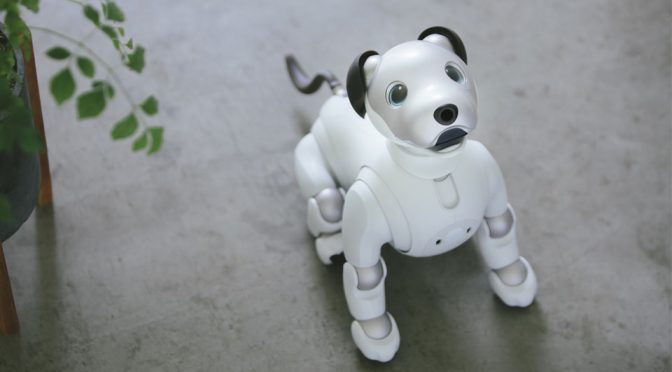 Sony To Sell Limited aibo Companion Robot In The U.S.