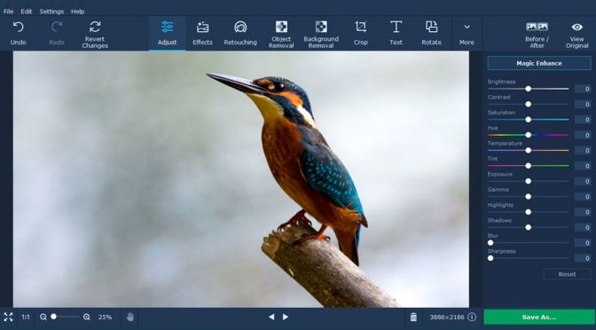 Using Movavi Photo Editor: What You Need To Know