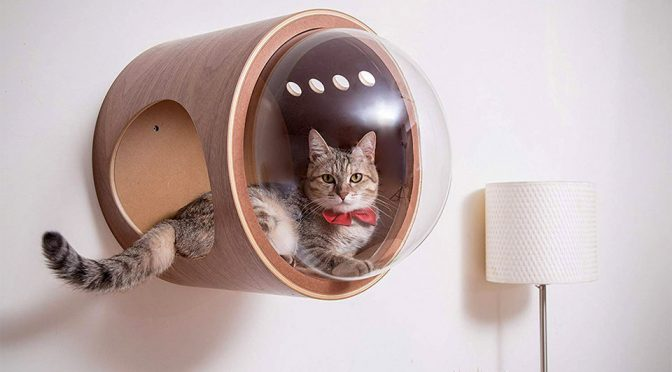 Spaceship Cat Beds Will Make Your Feline Friend Feels Like A Space Cat