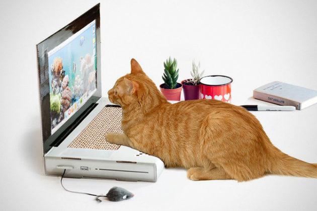 SUCK UK Cat Scratch Laptop