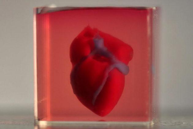 3D Printed Heart by Tel Aviv University
