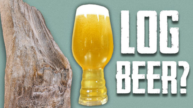 Log Beer Home Brew Beer by Dailey Crafton