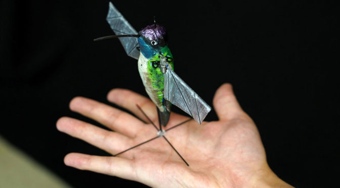 Purdue University Hummingbird Robot