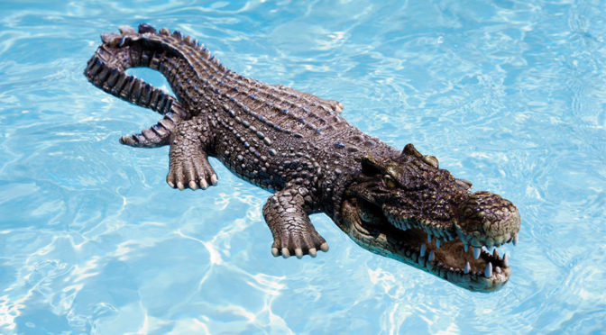 30-inch Floating Crocodile Decoy For Pool