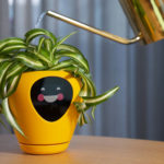 "This Smart Planter Will Let You Know Its ""Feelings"" Via An Integrated Digital Display"