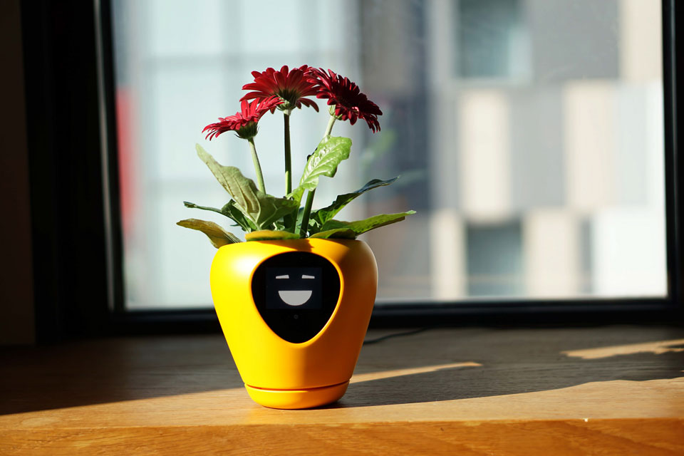 Lua Smart Planter With Feelings