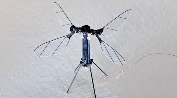 Untethered Insect-sized Robot Harvard