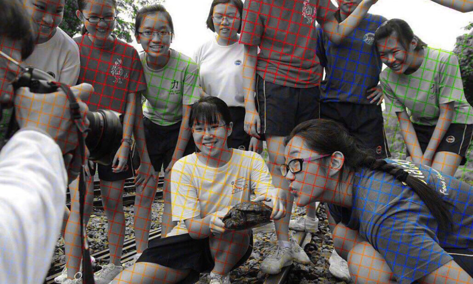 Color Assimilation Grid Illusion