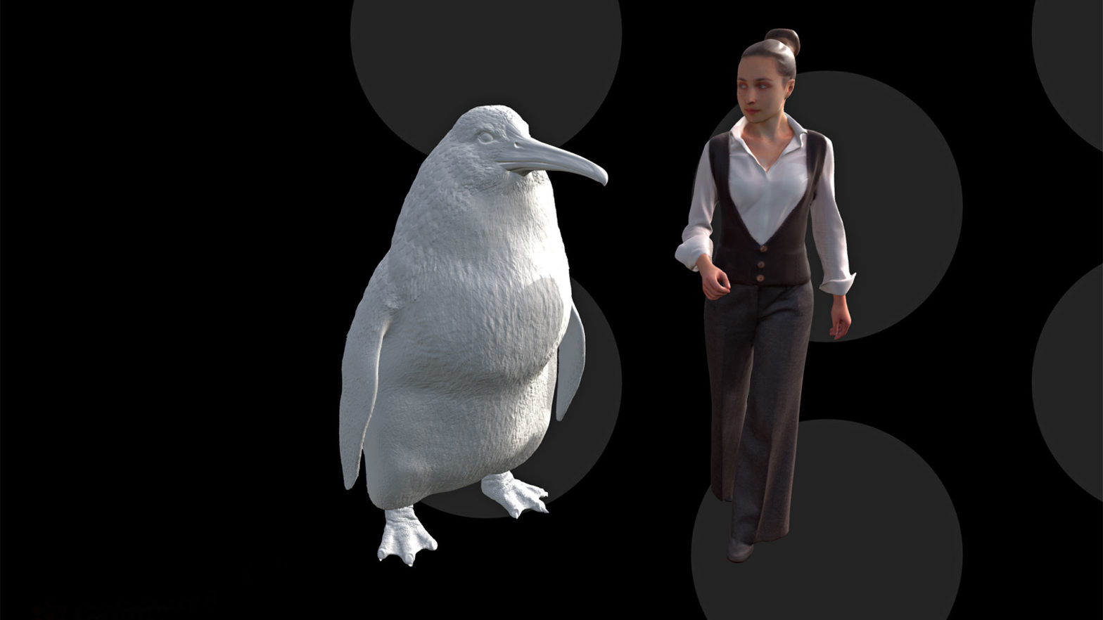 Human-sized Penguin In New Zealand