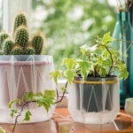 Eco-friendly Low-tech Self-watering Plant Pots Take The Guesswork Out Of Watering Plants