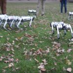 A Pack Of Robots Frolicking In The Open Is Not A Robot Dystopia Future, <em>Yet</em>
