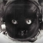 We Got Trippy Looking At This Awesome, Surrealistic Cats And Dogs Space Journey Calendar