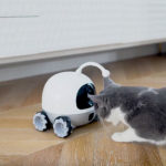 Rocky Is A Companion Robot For Your Cats That Dispenses Treats And Monitors Home Too