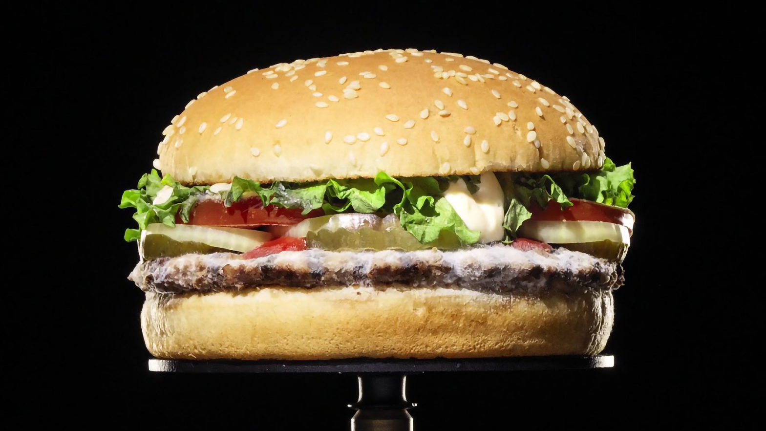 Burger King Molded Burger Campaign