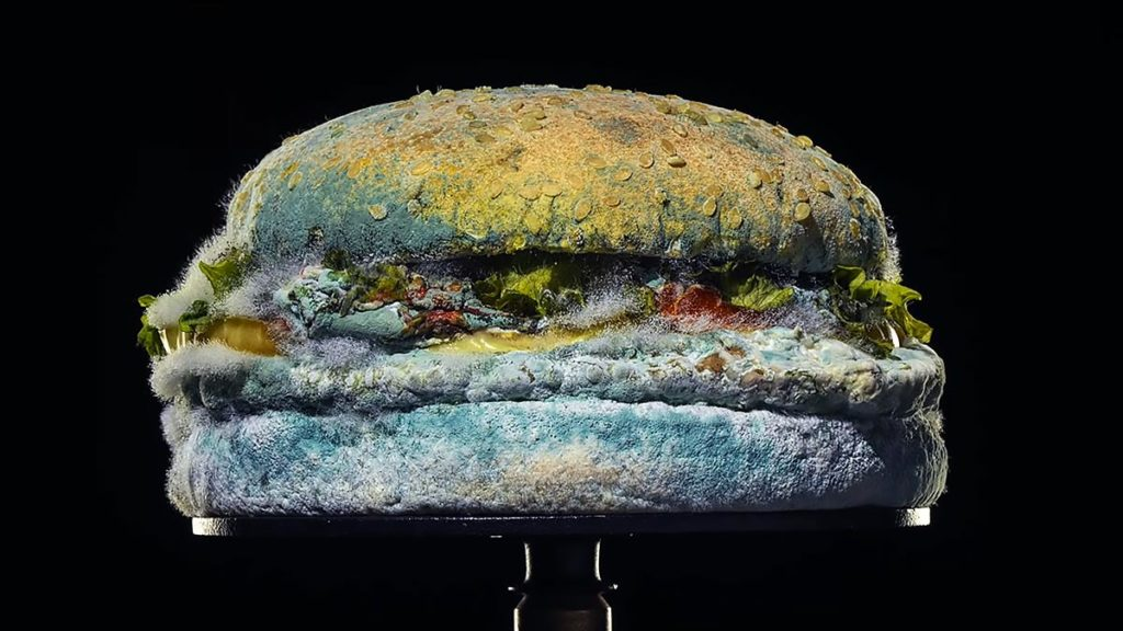 Burger King Molded Burger Campaign
